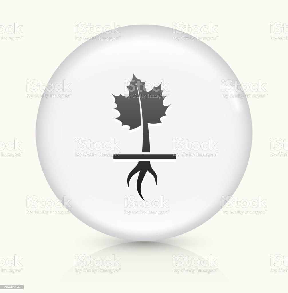 Growing Maple Plant icon on white round vector button vector art illustration