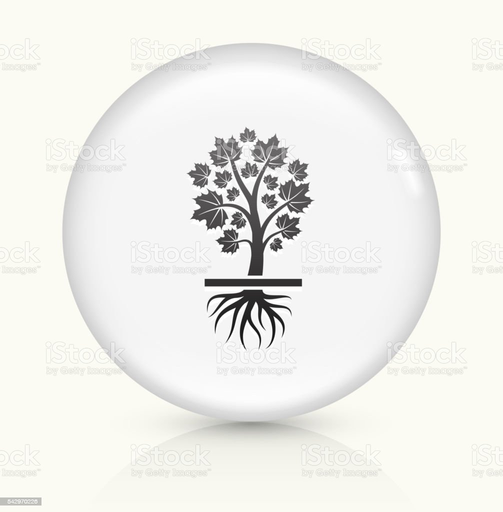 Growing  maple tree vector art illustration