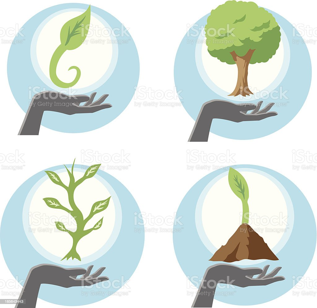 Growing plants royalty-free stock vector art