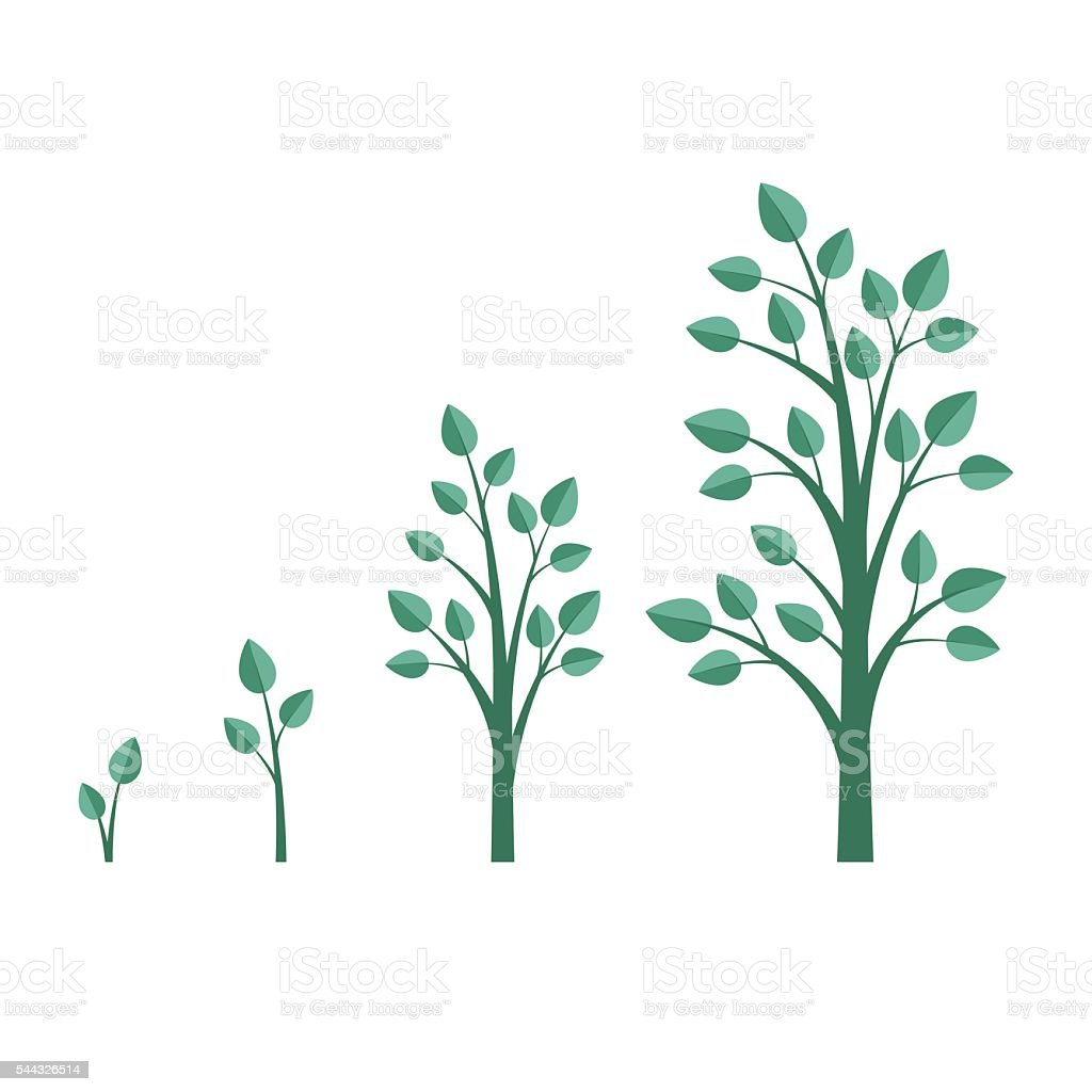 how to grow a tree runescape