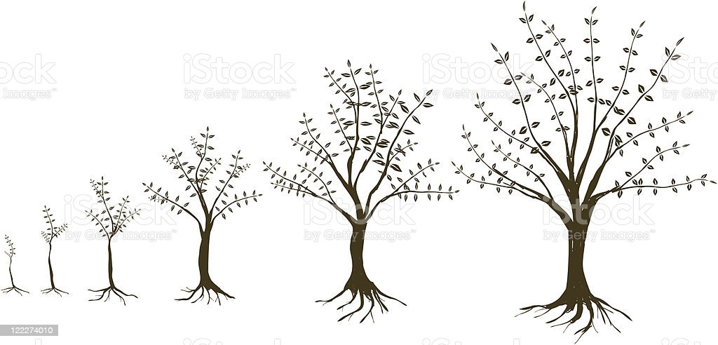 growing trees vector art illustration