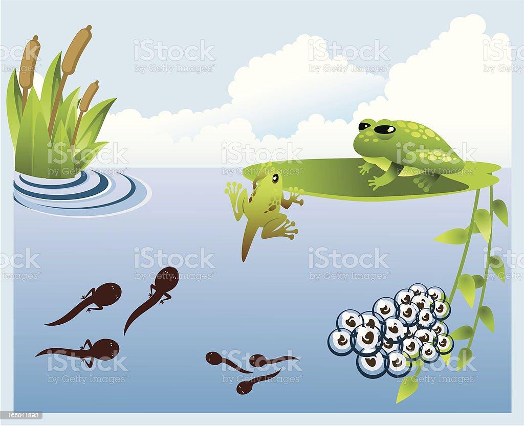Growing up vector art illustration