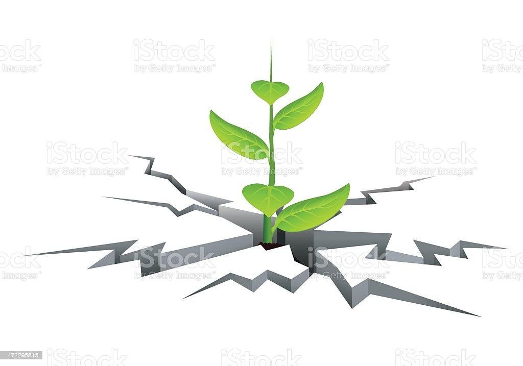 Growth sprout royalty-free stock vector art