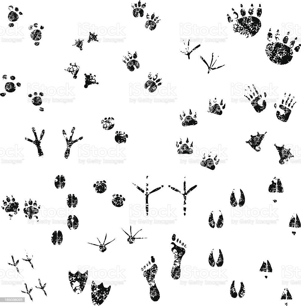 Grunge Footprints set  01 vector art illustration