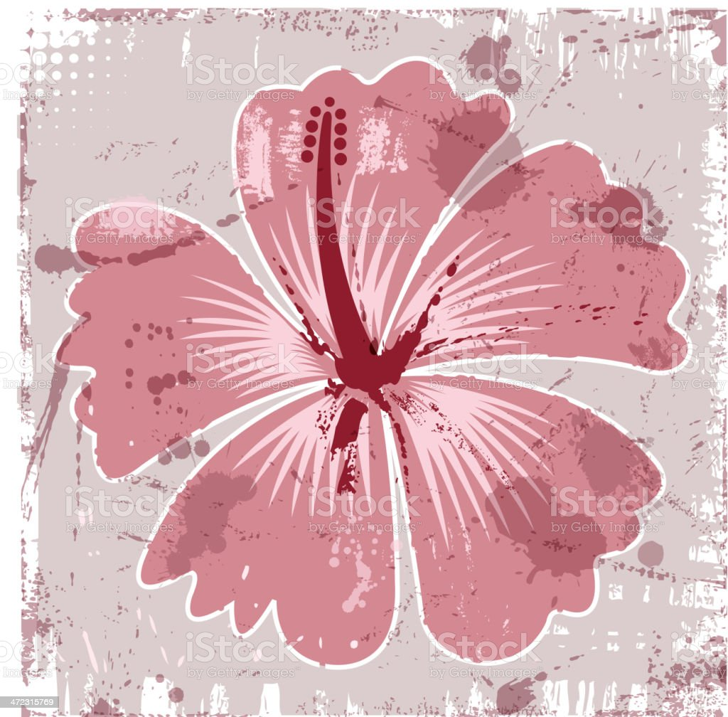 grunge hibiscus royalty-free stock vector art