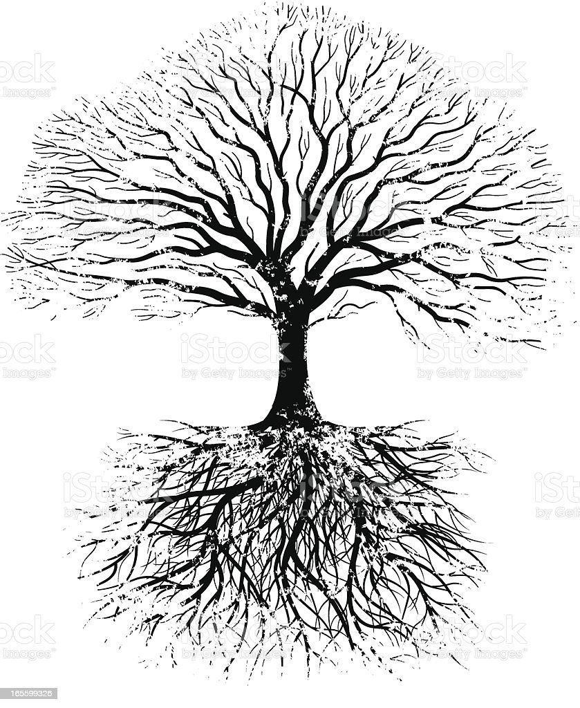grunge real tree stock vector art 165599326 istock