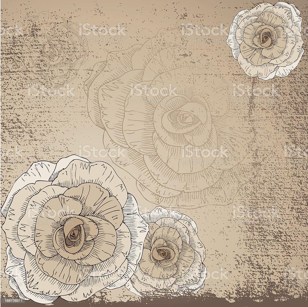 Grunge Rose royalty-free stock vector art