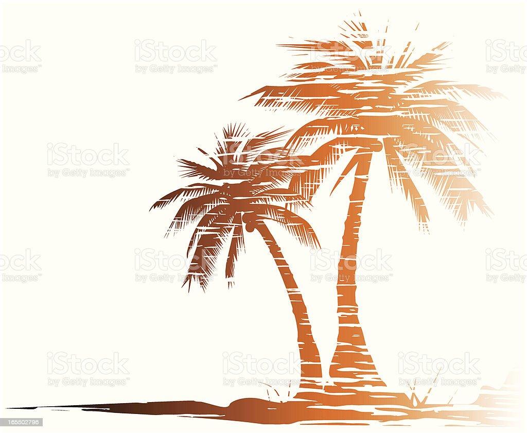 Grungy palm trees - VECTOR vector art illustration