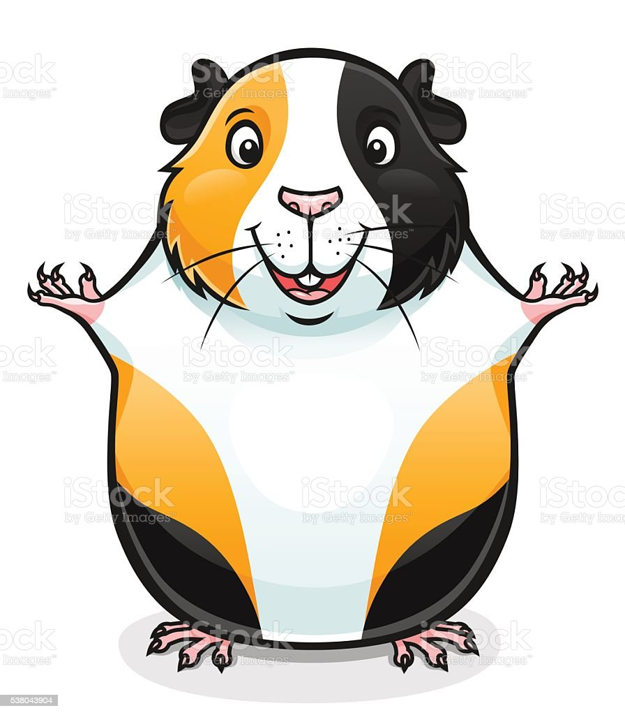 guinea pig clip art  vector images   illustrations istock dog and cat clip art cartoon dog and cat clip art cartoon