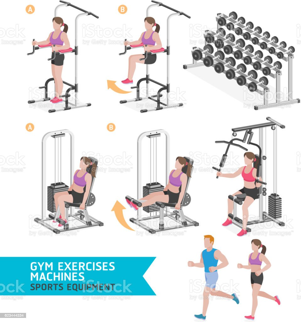 Gym exercises machines sports equipment. vector art illustration