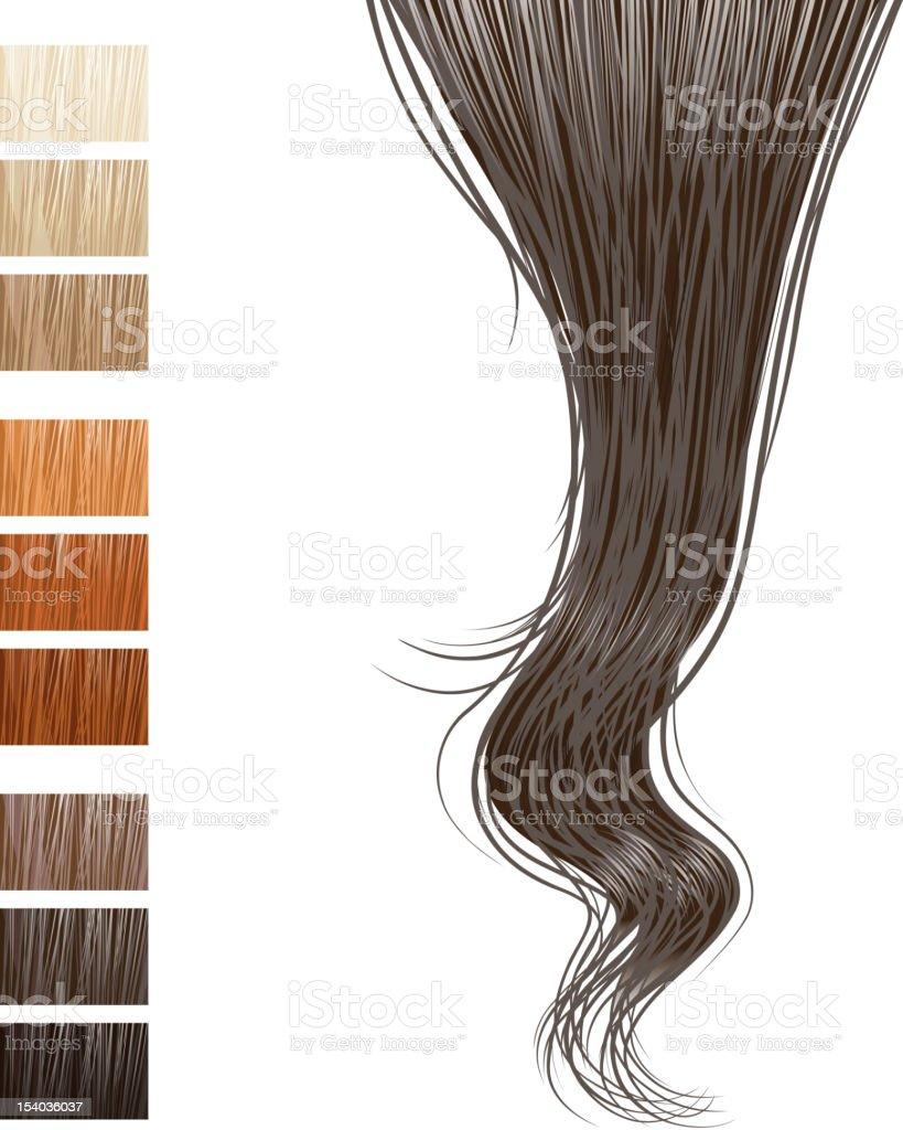 hair lock vector art illustration