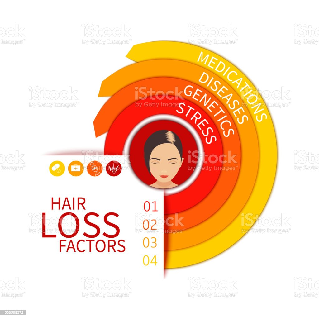 Hair loss factors chart vector art illustration