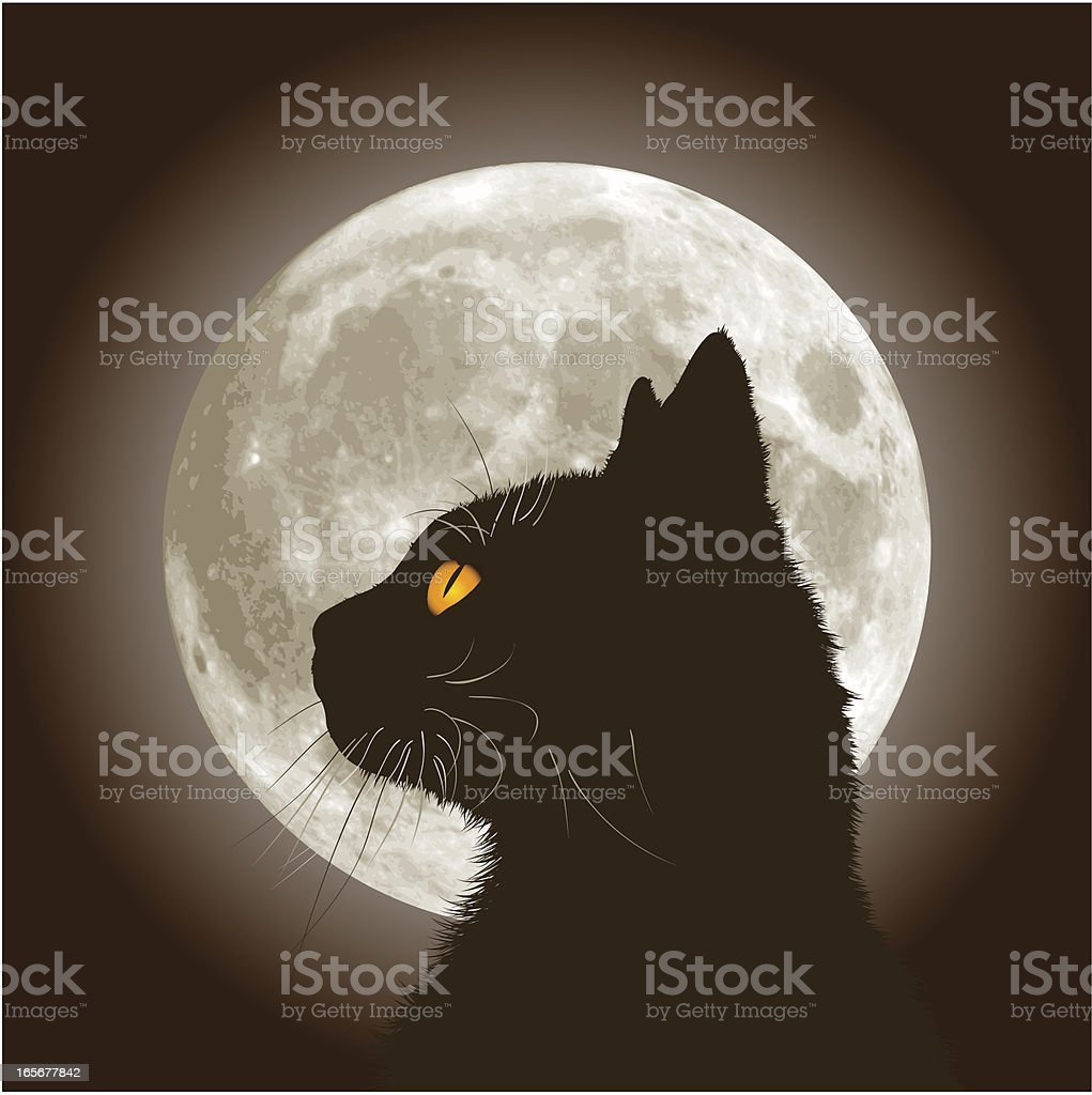 Halloween Black Cat vector art illustration