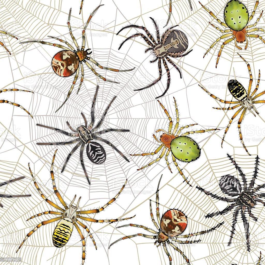 Halloween seamless pattern with spiders on web vector art illustration