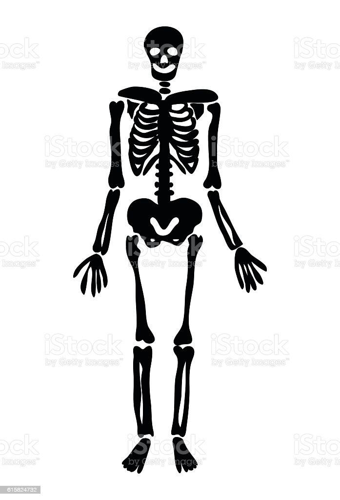 halloween skeleton vector symbol icon design royalty free stock vector art - Halloween Skeleton