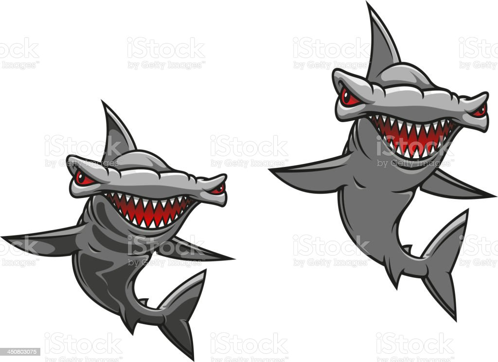 Hammerhead shark royalty-free stock vector art