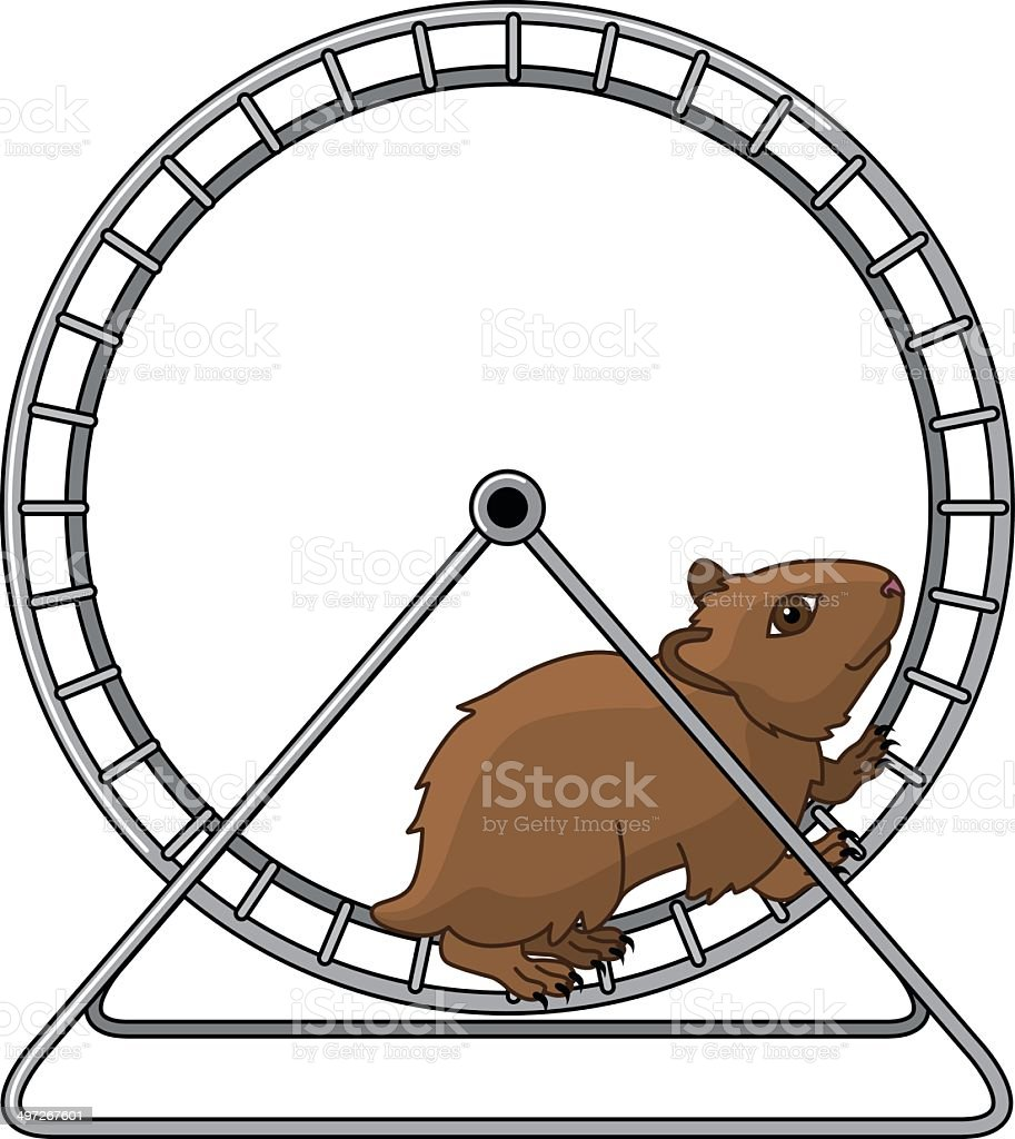 hamster and exercise wheel vector art illustration