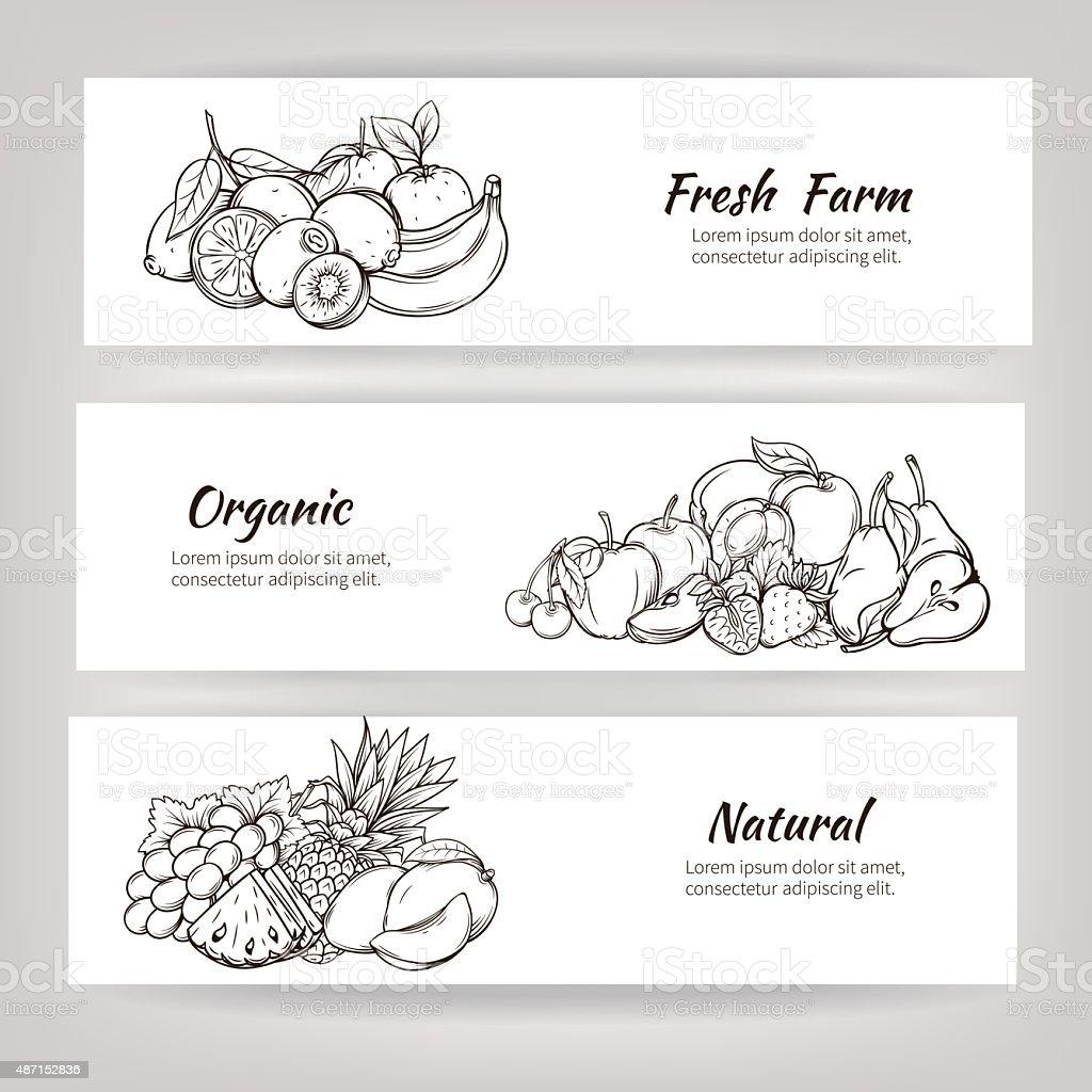 hand draw fruits banner vector art illustration