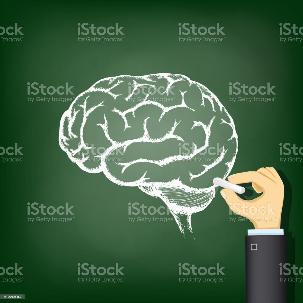 Hand drawing a chalk human brain. vector art illustration
