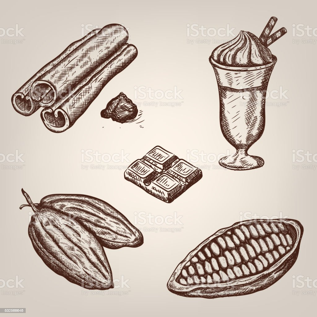 Hand drawing illustration of cacao beans, hot chocolate, cinnamon. vector art illustration