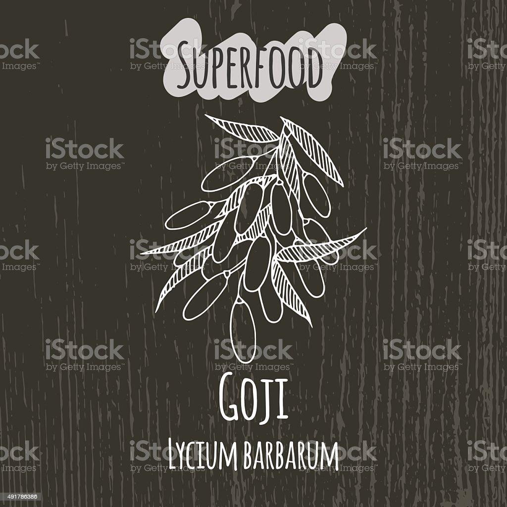 Hand drawing illustration of goji berries. Lycium barbarum vector art illustration