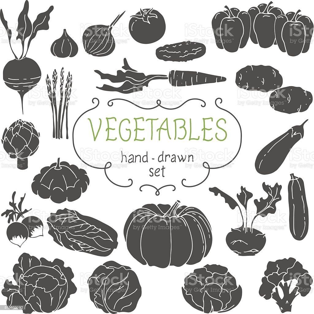 Hand drawing vegetables set. Vector illustration vector art illustration