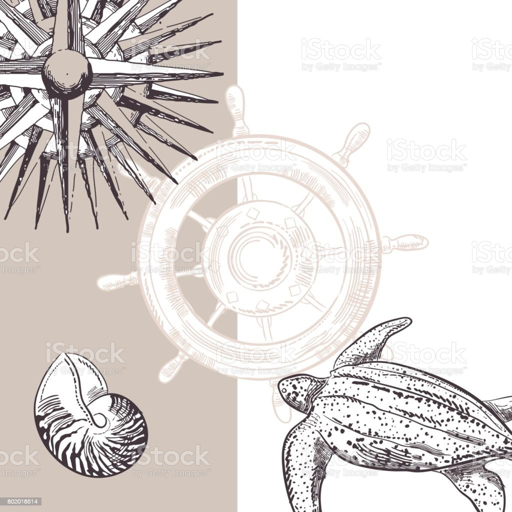 Hand Drawn Backgrounds With Nautical Elements vector art illustration