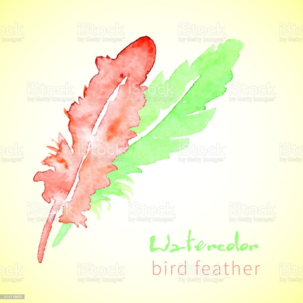 Hand drawn  beautiful stylish ethnic feathers vector art illustration