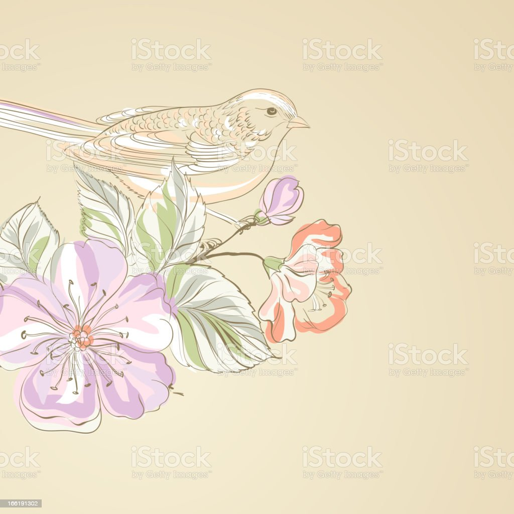 Hand drawn bird on sacura branch royalty-free stock vector art