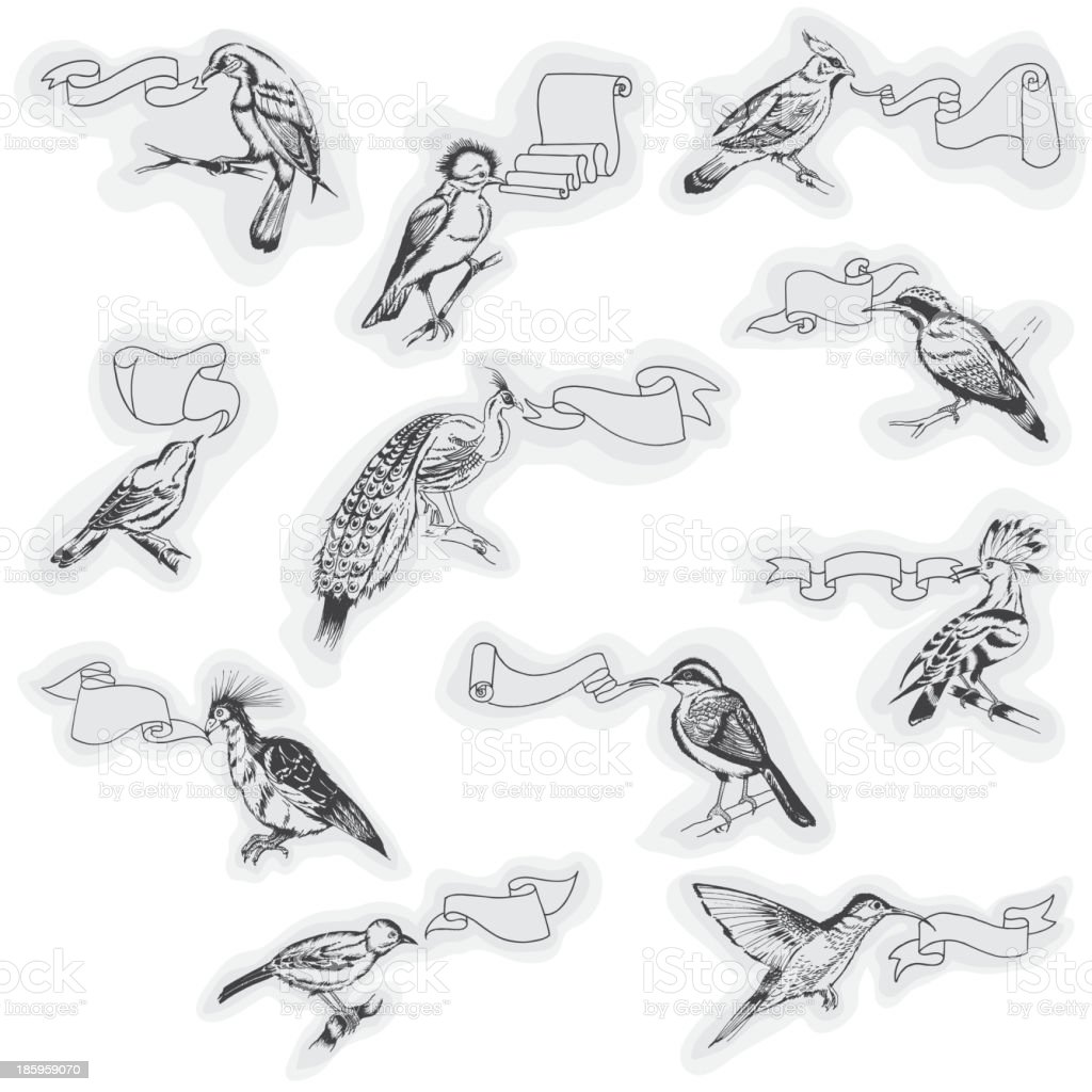 Hand drawn Birds with Signs royalty-free stock vector art