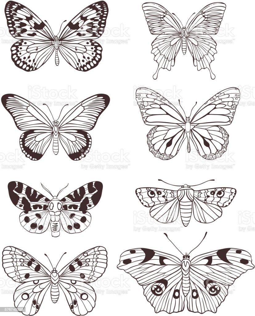 Hand drawn butterflies vector art illustration