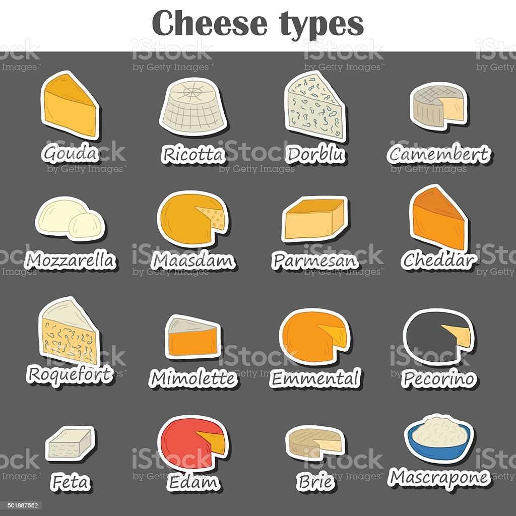 Hand drawn cheese types vector art illustration