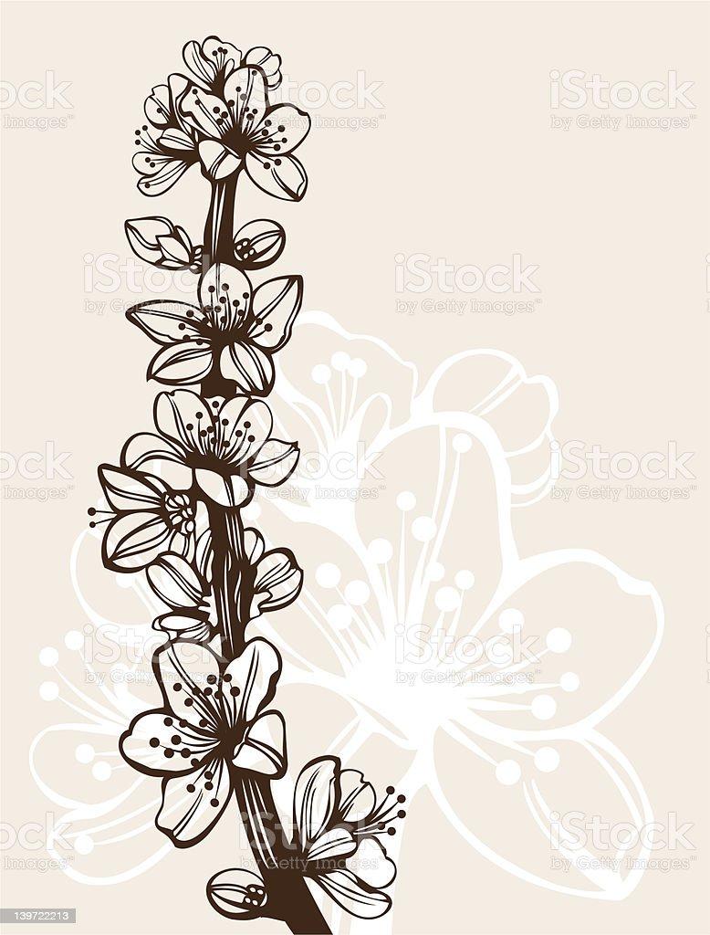 Hand drawn cherry blossom branch royalty-free stock vector art