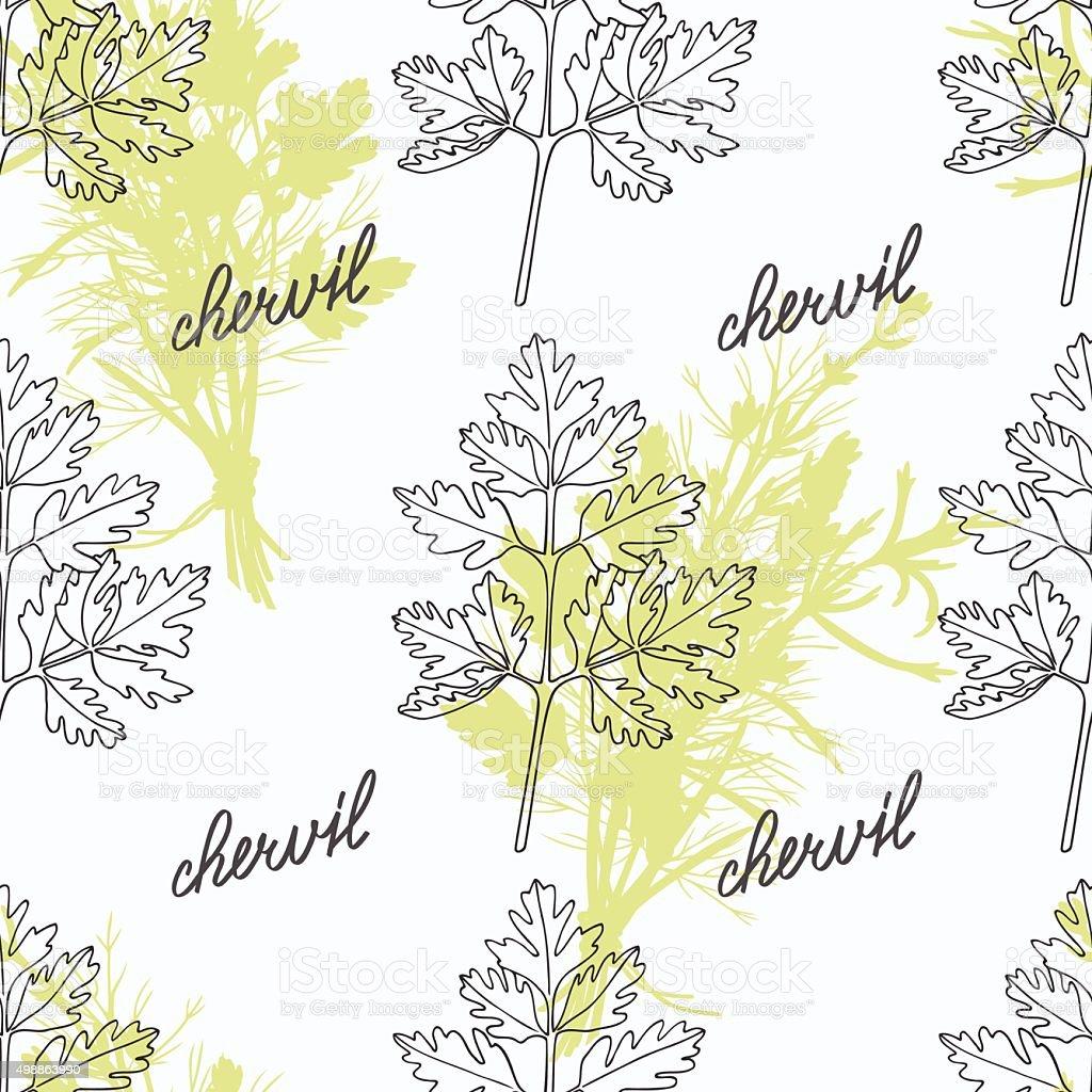 Hand drawn chervil branch and handwritten sign. Spicy herbs seamless vector art illustration