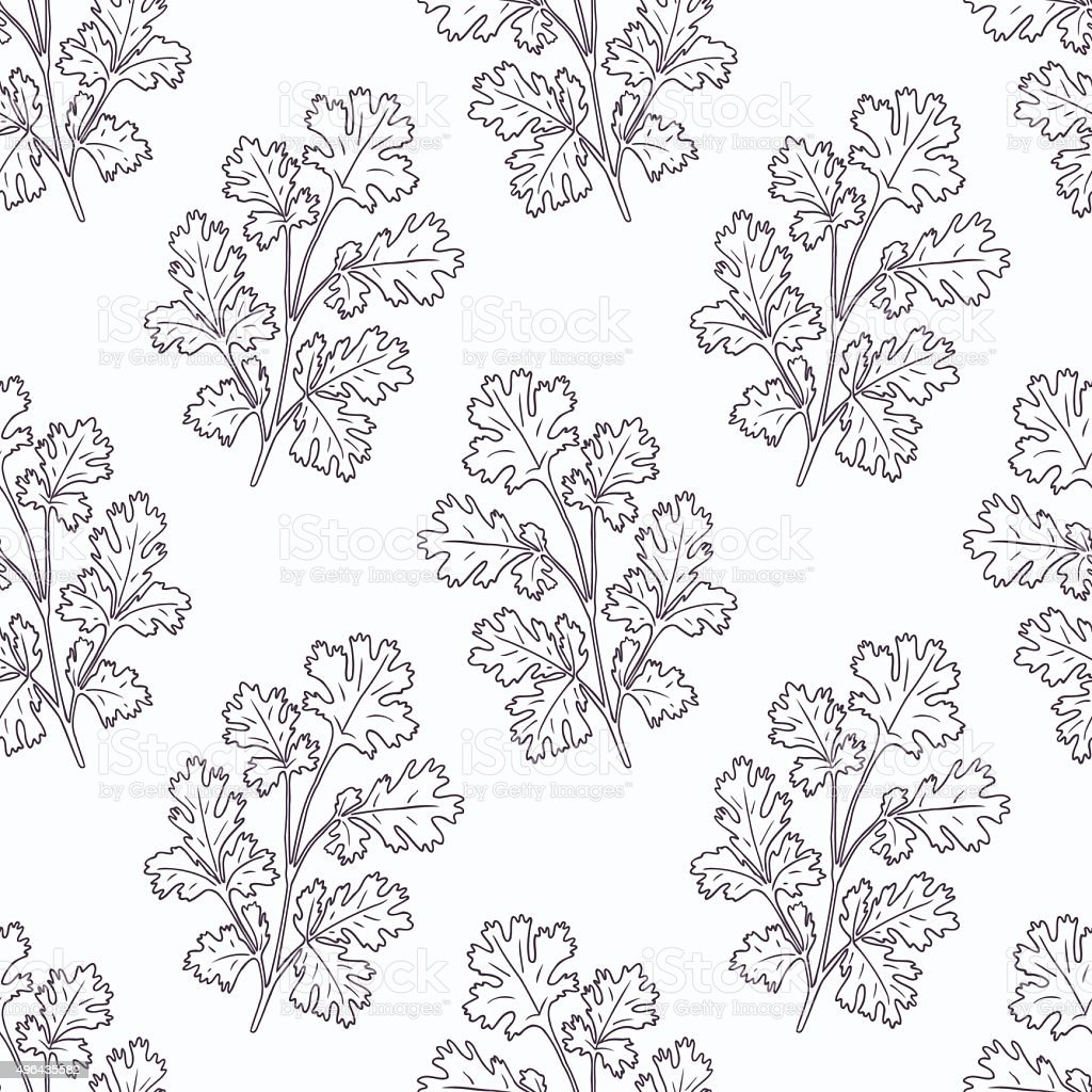 Hand drawn cilantro branch outline seamless pattern vector art illustration