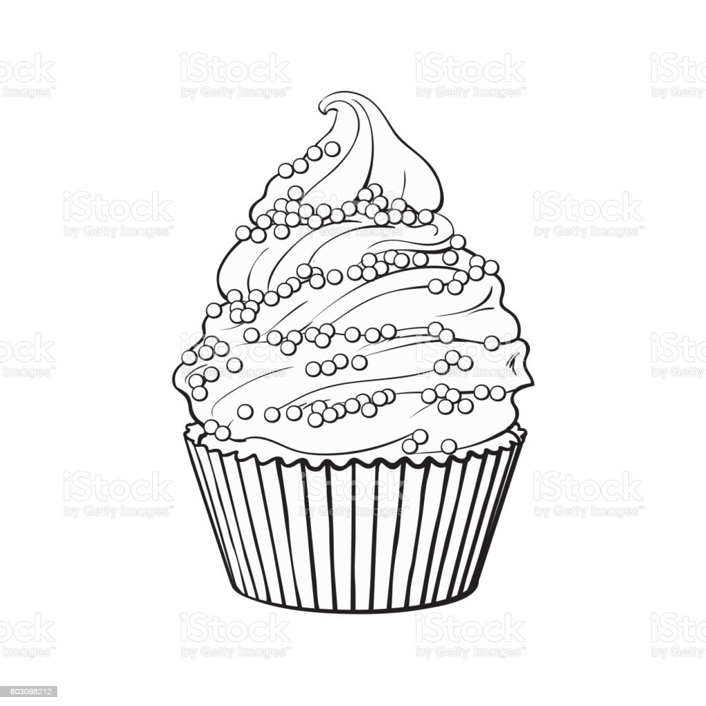 Hand drawn cupcake with perfect cream swirls and sprinkles vector art illustration