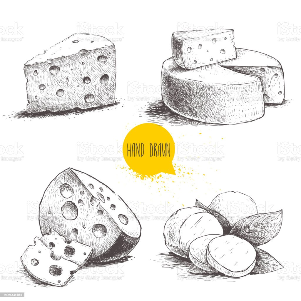 Hand drawn different type of cheese set vector art illustration