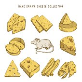 Hand drawn doodle cheese set Vector vintage illustration.