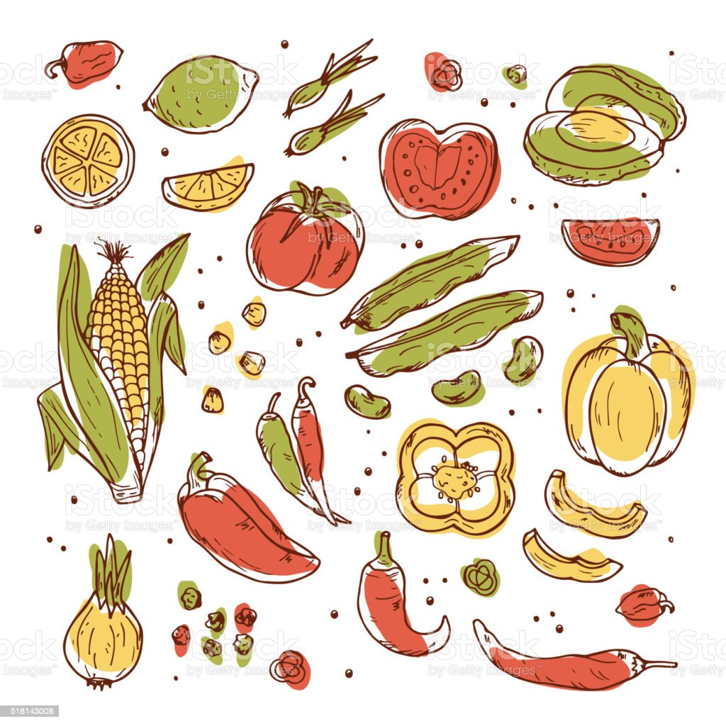 Hand drawn doodle Fresh Fruits and Vegetables - Vector set vector art illustration