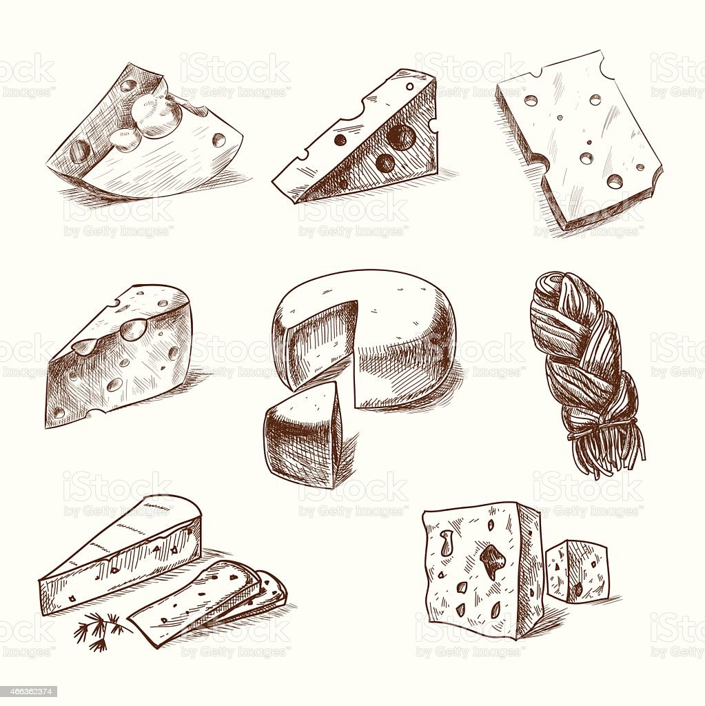 Hand drawn doodle sketch cheese with different types of cheeses vector art illustration