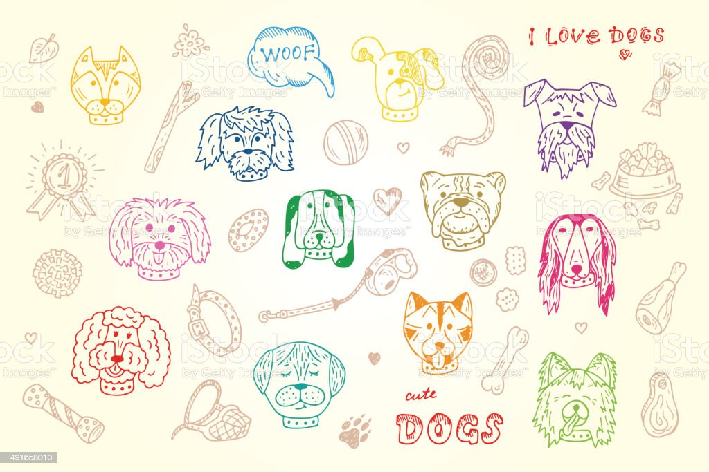 Hand Drawn Doodles Dogs and accessories for pets Vector Set vector art illustration
