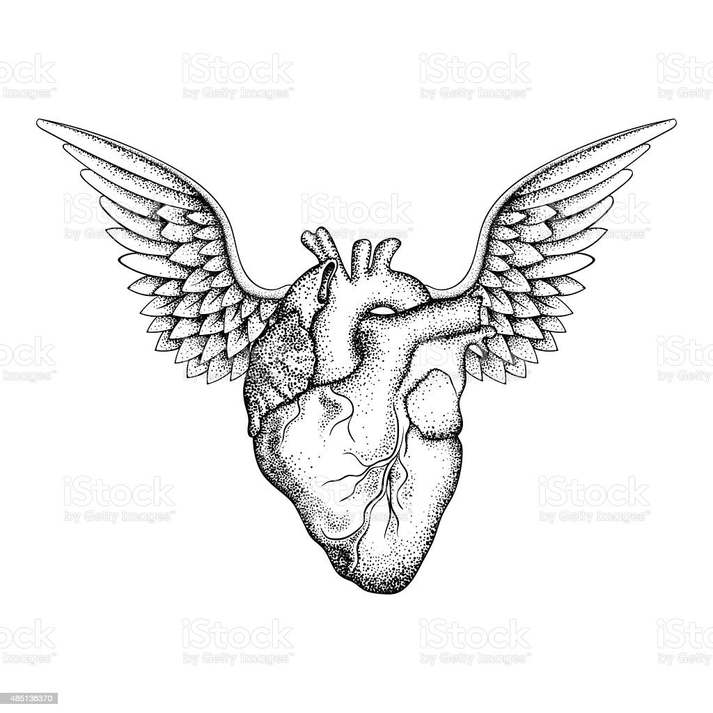 Hand drawn elegant heart with wings vector art illustration