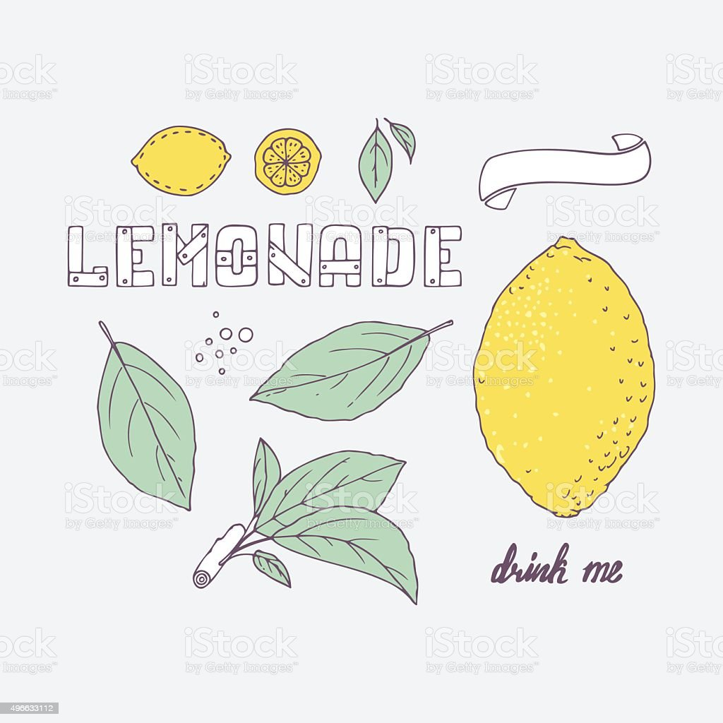 Hand drawn elements for lemonade or soda. Doodle lemon, leaves vector art illustration