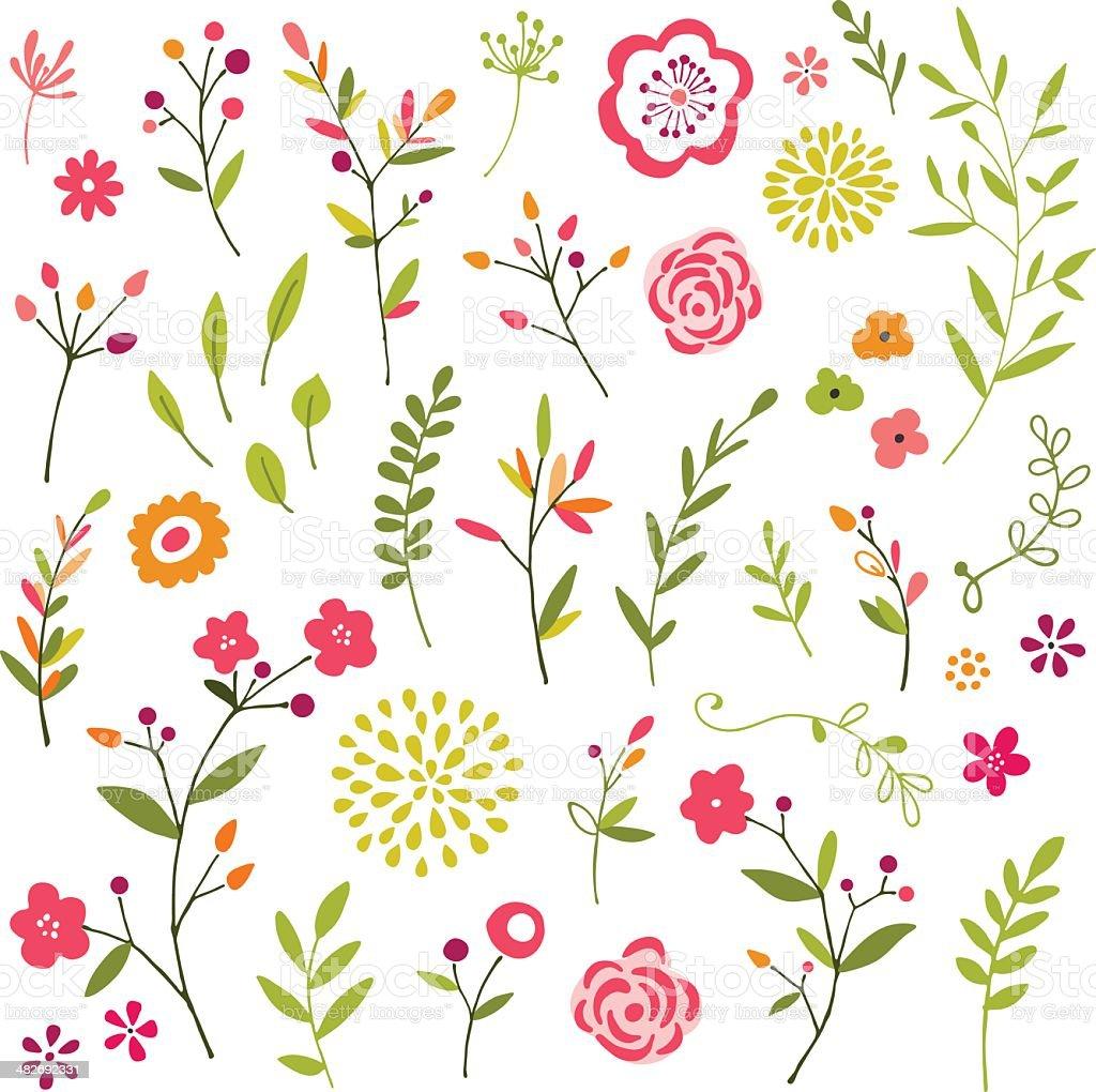 Hand Drawn Floral Design ELements vector art illustration