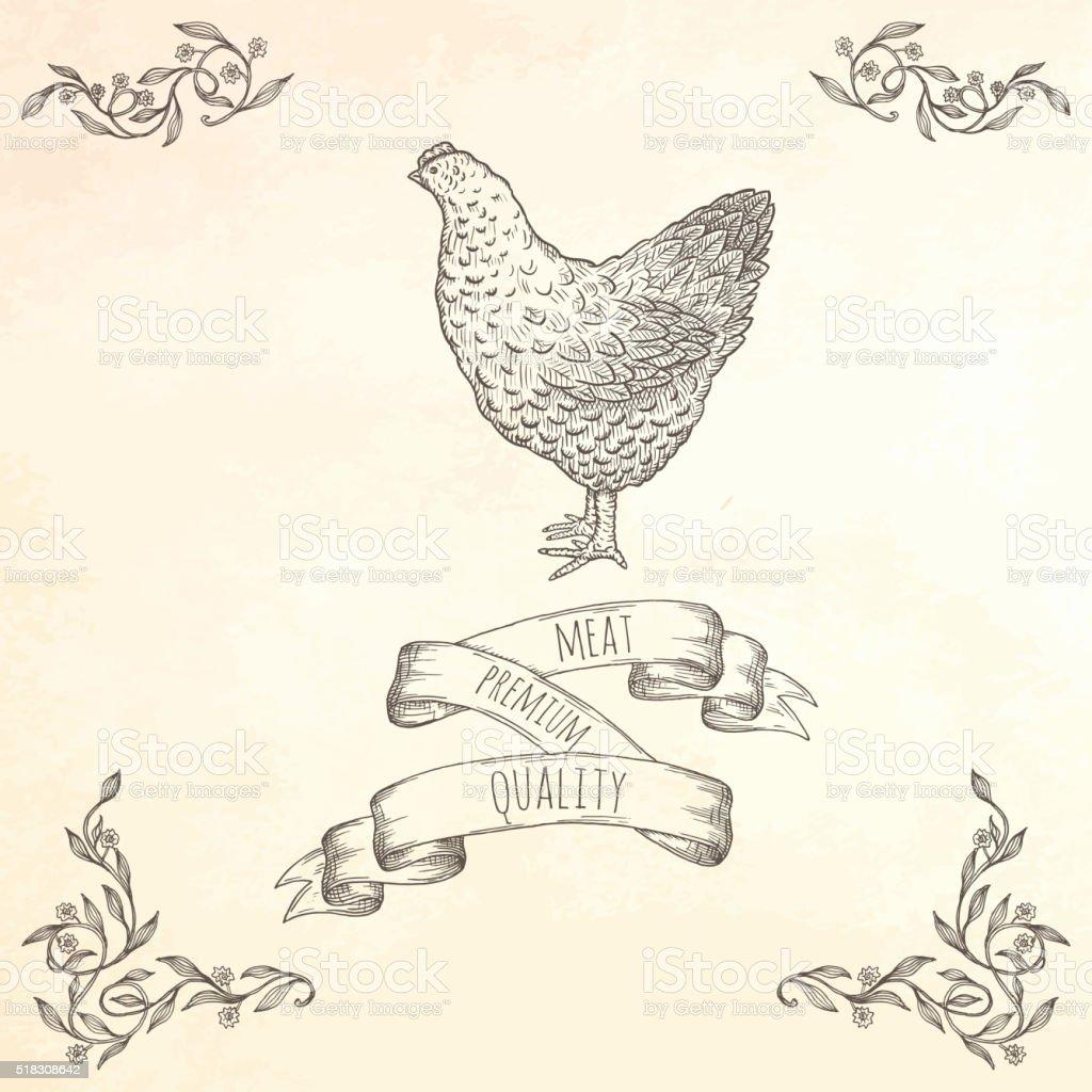 Hand drawn hen illustration. vector art illustration
