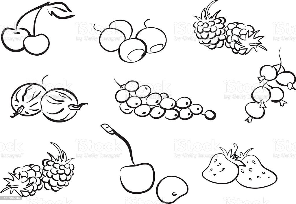 Hand drawn illustration of a variety of berries royalty-free stock vector art
