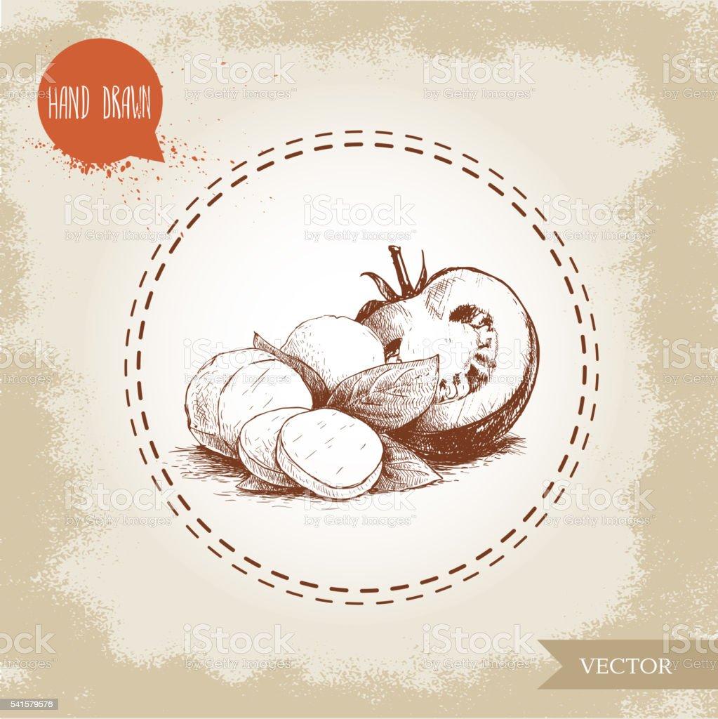 Hand drawn mozzarella cheese with basil leafs andtomato vector art illustration
