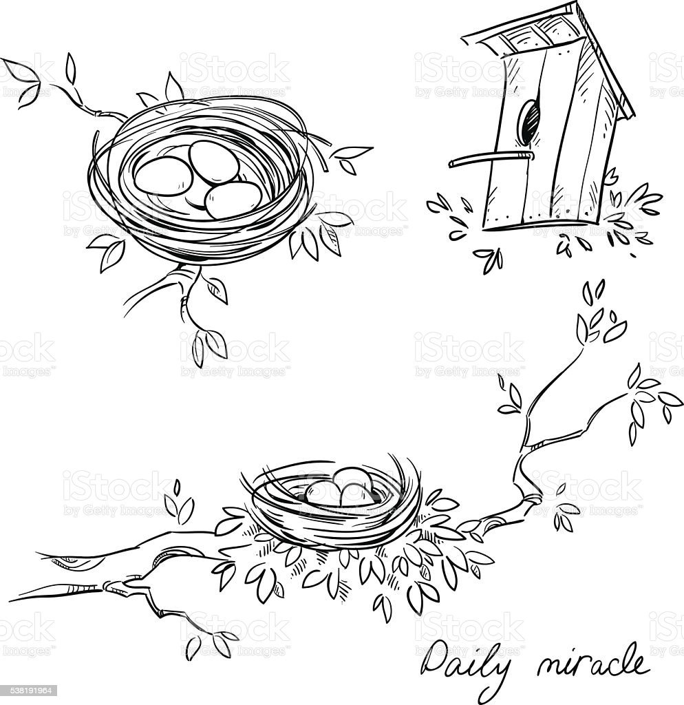 Hand drawn nests and a birdhouse vector art illustration