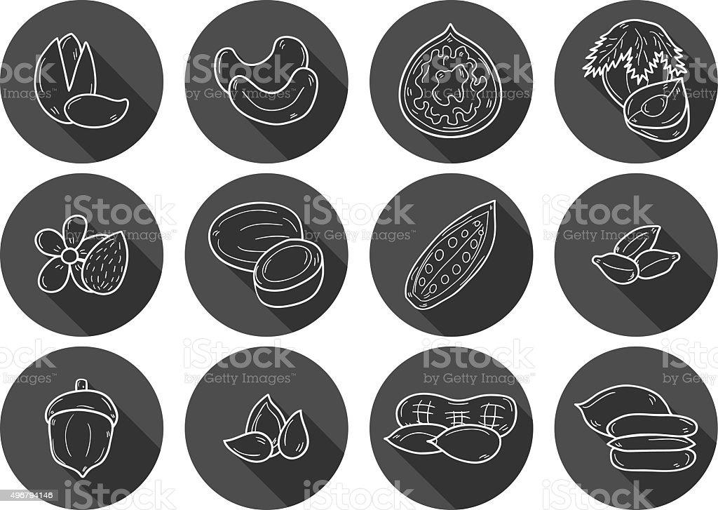 Hand drawn nuts icons vector art illustration