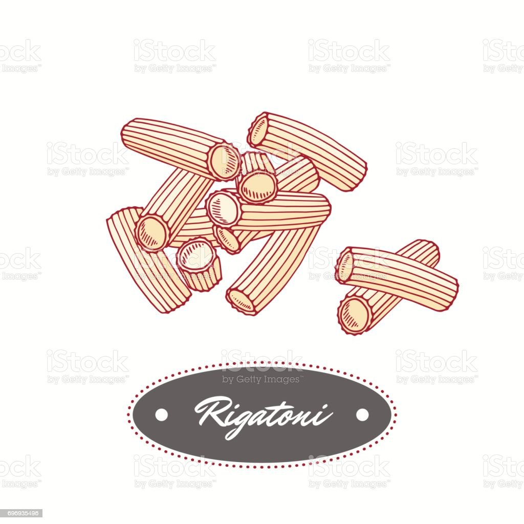 Hand drawn pasta rigatoni isolated on white. Element for restaurant or food package design vector art illustration